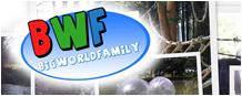 bigworldfamily.com